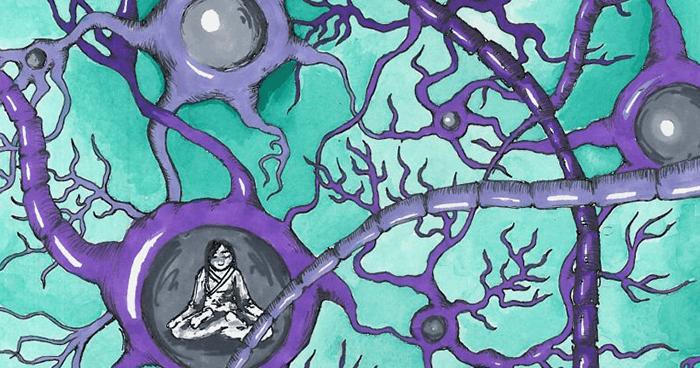 Neural pathways in your brain
